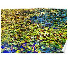 Lily Pond at Spur Cross Ranch Poster