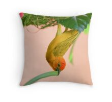 Golden Palm Weaver 2 Throw Pillow