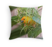 Golden Palm Weaver 7 Throw Pillow
