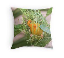 Golden Palm Weaver 8 Throw Pillow