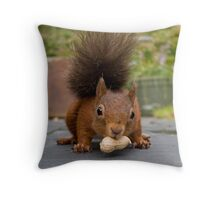 Red Squirrel 2 Throw Pillow
