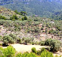 On The Road To Deia..........................................Majorca by Fara