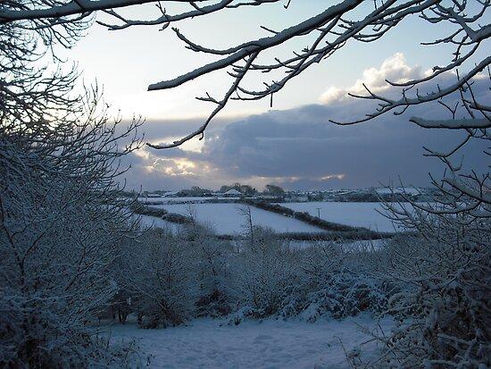 Snow scene in Stithians by helenStithians