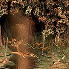 Wetlands by poinsiana