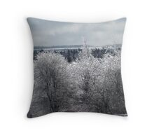 Landscape in Silver and Grey Throw Pillow