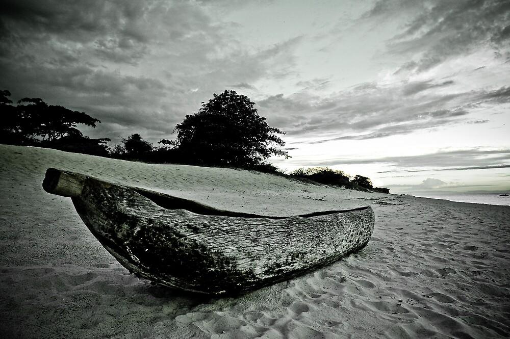 Native Canoe, Lake Malawi by Tim Cowley
