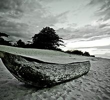 Native Canoe, Lake Malawi by Tim Cowley