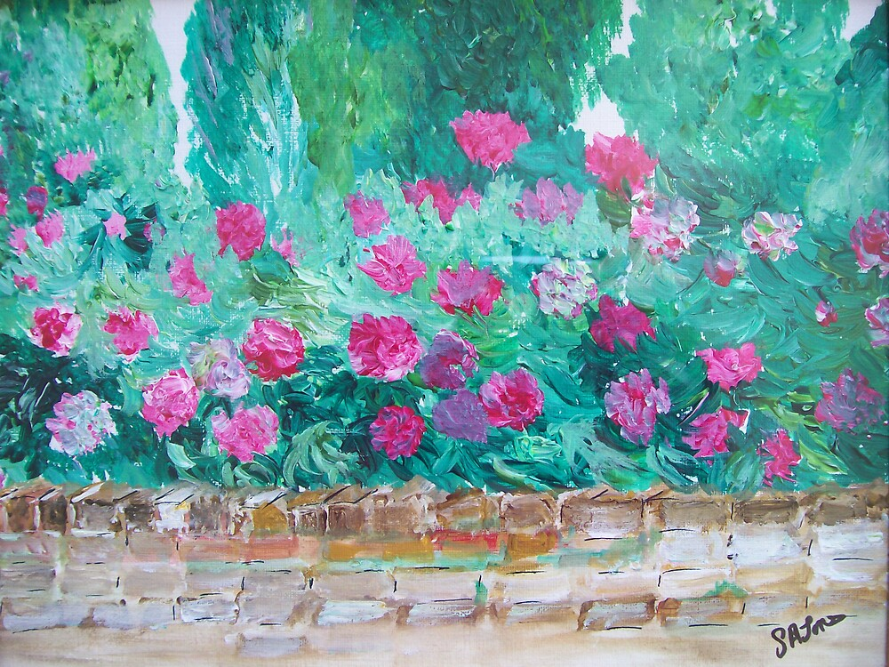 Peony walled garden by Susie J