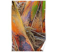 Palm Bark in Living Color Poster