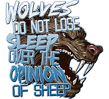 Wolves Opinion Photographic Print