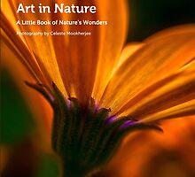 My book, Art in Nature by Celeste Mookherjee