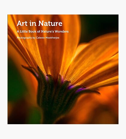 My book, Art in Nature Photographic Print