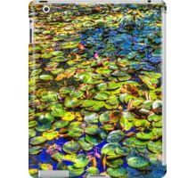 Lily Pond at Spur Cross Ranch iPad Case/Skin