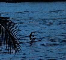 Paddle home by pictureit