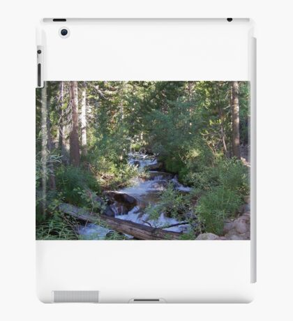 calvin and hobbes forest iPad Case/Skin