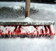Frozen broom by Paola Svensson