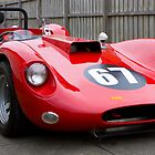 The Williams Special completed by Larry Varley