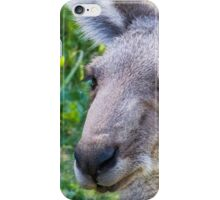 Wallaby face iPhone Case/Skin
