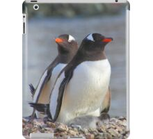 Pair of Gentoo Penguins on the Nest with Chicks iPad Case/Skin