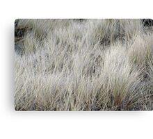 """Wind Blown Grass"" Canvas Print"