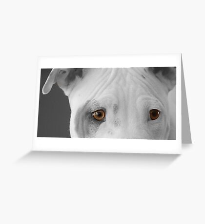 freckles the pit 2 Greeting Card