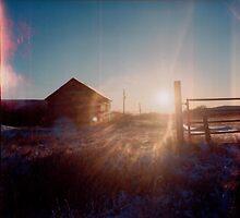 Duaflex II Sun Flare by Leanna Lomanski