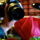 The Camera and the Rose. by shrimpies4life