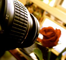 The Camera and the Rose II. by shrimpies4life