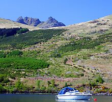 The  boat  and  the cobbler by Alexander Mcrobbie-Munro