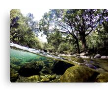 Iao Valley River In Maui Canvas Print