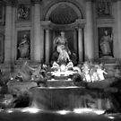 Trevi Fountain - Rome - Italy by Steven McEwan