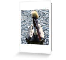 Tarpon Springs Pelican Greeting Card