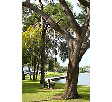 Tarpon Springs Florida Photographic Print