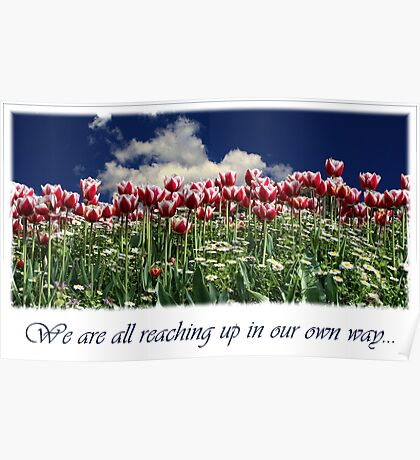 We Are All Reaching Up In Our Own Way... Poster