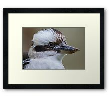 Guess Who's Back? Framed Print