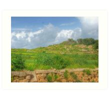 Typical maltese field walls Art Print