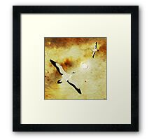 Birds of The Sun Framed Print