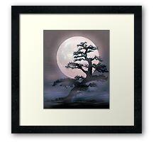 Moonlight on Bonsai Elm Framed Print
