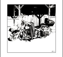 Iron Horse II by Don Bailey