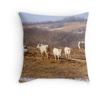Have You Ever Seen A White Cow? Throw Pillow