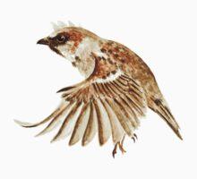 Sparrow Kids Clothes