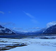 Arrow Lake Winter by Tiffany Vest