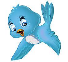 Cute Blue Bird Photographic Print