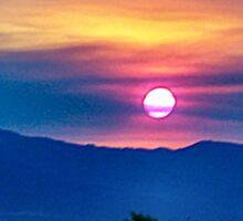 Socal fire sunset Sticker