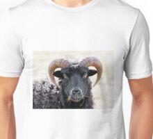 "Black Sheep ""Eye to Eye Contact""  Hebridean Sheep Unisex T-Shirt"