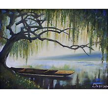 Willow Boat Photographic Print