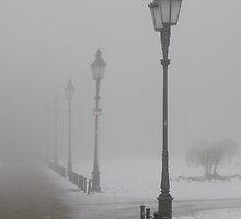 consumed by fog by Florian Verhein