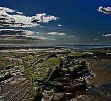 coastlines by paula cattermole artinapuddle