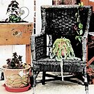 Wicker Chair by CarolM