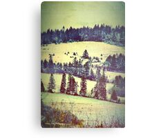 In Winter Days Gone By Metal Print